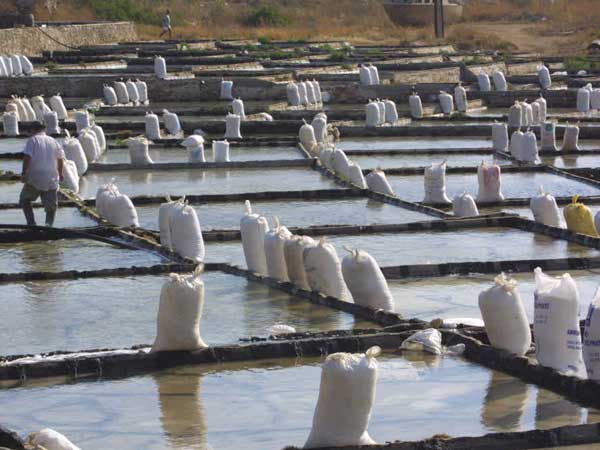 Salt Marshes in Anfeh, Lebanon